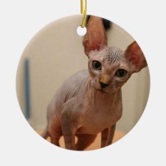 """Niedliches sphynx Kätzchen """"ich bin furless, sind Keramik Ornament"""