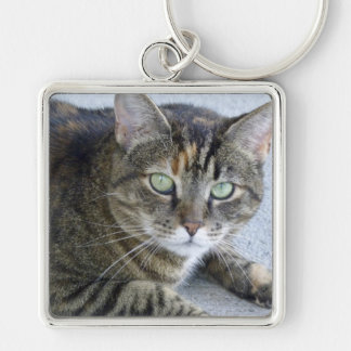 Niedliches Tabby-Katzen-Foto Silberfarbener Quadratischer Schlüsselanhänger