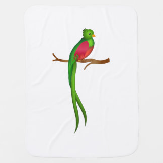 Niedliches Vogel Quetzal Puckdecke