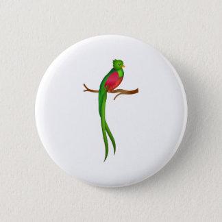 Niedliches Vogel Quetzal Runder Button 5,7 Cm