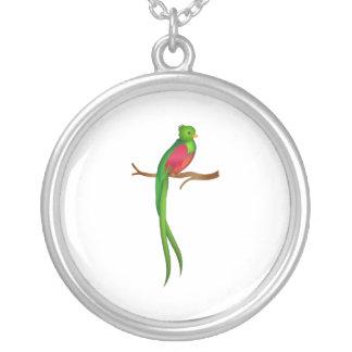 Niedliches Vogel Quetzal Versilberte Kette