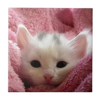 Niedliches weißes Kätzchen, das in der rosa Decke Keramikfliese