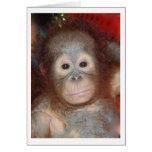 Niedlichster Baby-Orang-Utan, großer Affe von Karte
