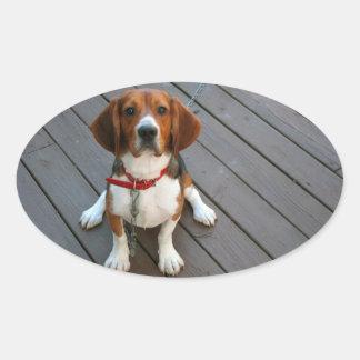 Niedlichster Beagle-Hund überhaupt Ovaler Aufkleber