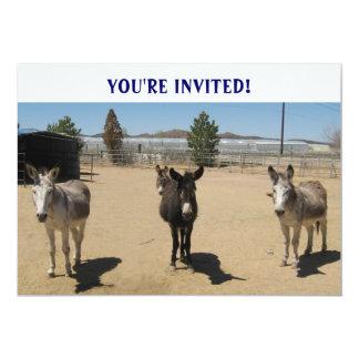 Niedlichster Geburtstagburros-Western 12,7 X 17,8 Cm Einladungskarte