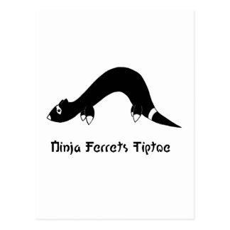 Ninja Frettchen Postkarte