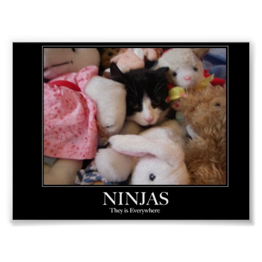 Ninjas - sie sind überall plakatdrucke