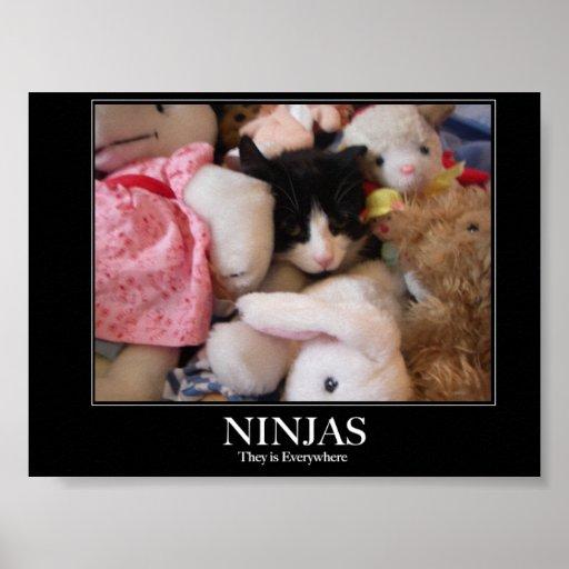 Ninjas - sie sind überall poster