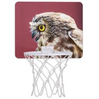 Nord Säge-Whet Eulen-Porträt Mini Basketball Ring