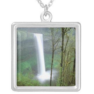 Nordamerika, USA, Oregon, Silber fällt Staat Versilberte Kette