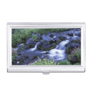 Nordamerika, USA, Washington, der Mount Rainier 3 Visitenkarten Etui