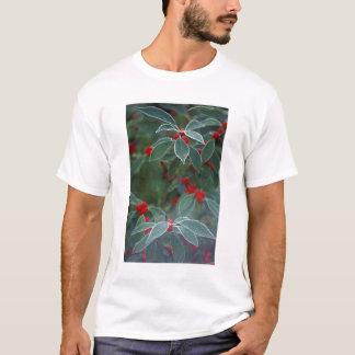 Nordamerika, Vereinigte Staaten, Neu-England. T-Shirt