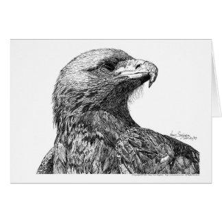 Nordamerikaner Eagle Feder Grußkarte