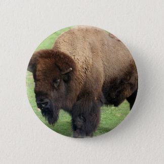 Nordamerikanischer Bison-runder Knopf Runder Button 5,1 Cm