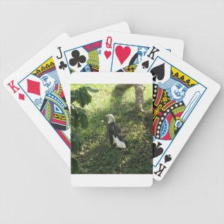 . Nordamerikanischer Weißkopfseeadler Bicycle Spielkarten