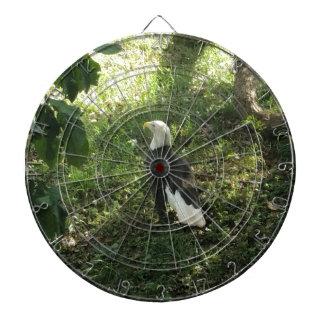 . Nordamerikanischer Weißkopfseeadler Dartscheibe