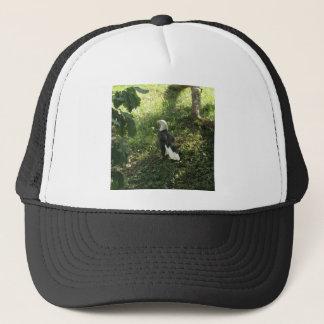 . Nordamerikanischer Weißkopfseeadler Truckerkappe