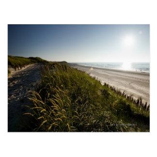 Norderney, Ostfrisian-Inseln, Deutschland Postkarten