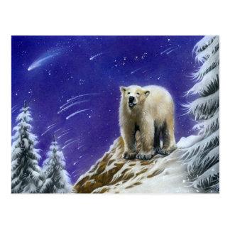 Nordlicht-Eisbärpostkarte Postkarte