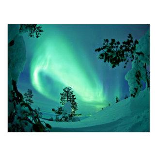 Nordlichter am Winter Postkarte
