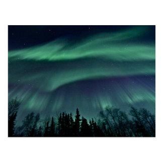 Nordlichter von Alaska Postkarte