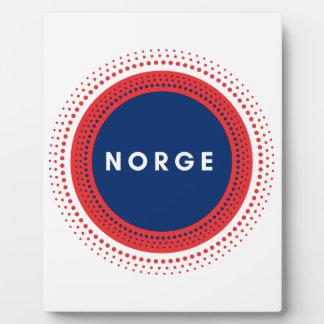 Norge Norwegen Fotoplatte