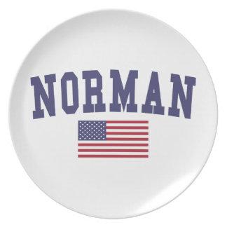 Normannische US-Flagge Flacher Teller