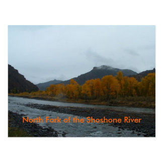 North Fork der Shoshone-Fluss-Postkarte Postkarte