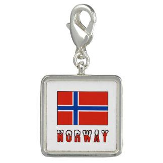 Norwegen-Flagge und Wort-Schnee Charm