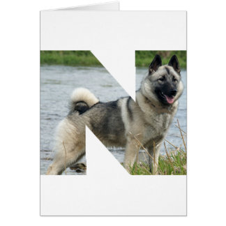 Norwegian_Elkhound in letter.png Karte