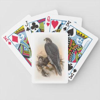 Norwegische Vögel Falke-Johns Gould von Bicycle Spielkarten