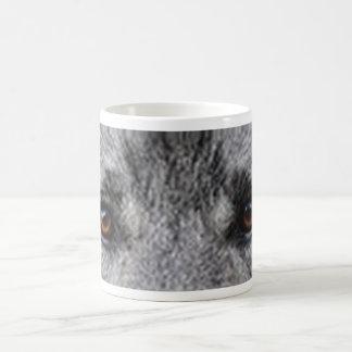norwegisches-elkhound eyes.png kaffeetasse