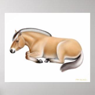Norwegisches Fjord-Pferd am Erholungs-Druck Poster