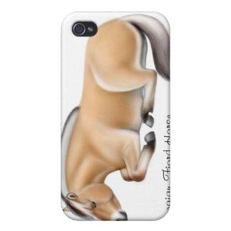 Norwegisches Fjord-Pferd an der Erholung Etui Fürs iPhone 4