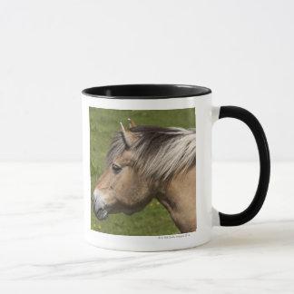 Norwegisches Fjord-Pferd Tasse