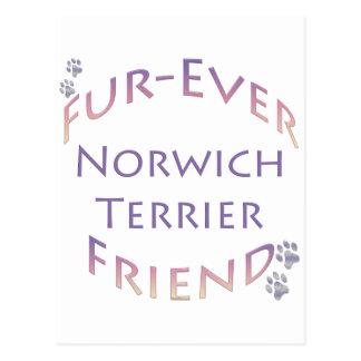 Norwich Terrier Furever Postkarte