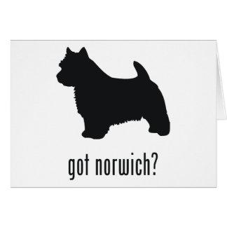 Norwich Terrier Karte