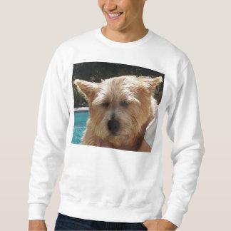 Norwich-Terrier Sweatshirt