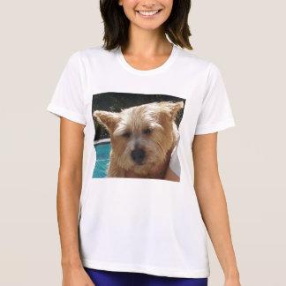 Norwich-Terrier T-Shirt