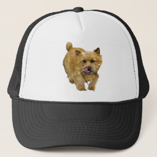 Norwich Terrier Truckerkappe