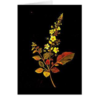 Notecard-Botanische Kunst-Mary Delany 8 Karte