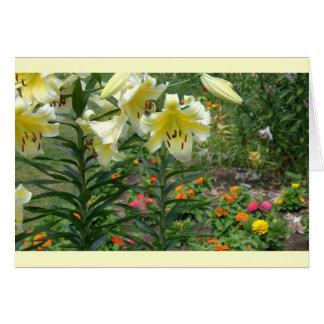 notecard, buntes Mischblumen Grußkarte