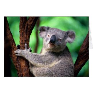 Notecard-Koala so niedlich! Karte
