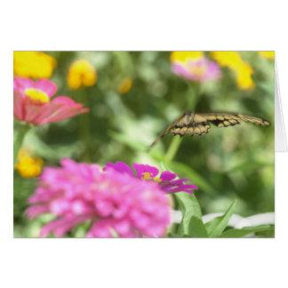 Notecard mit Frack-Schmetterling Karte