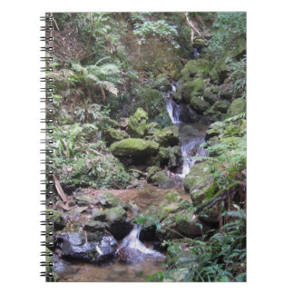 Notizbuch des Wasserfall-1 Spiral Notizblock