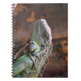 Notizbuch mit bunter Leguaneidechse Notizblock