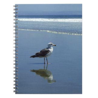Notizbuch/persönliche Zeitschrift - Seemöwe auf Notizbücher