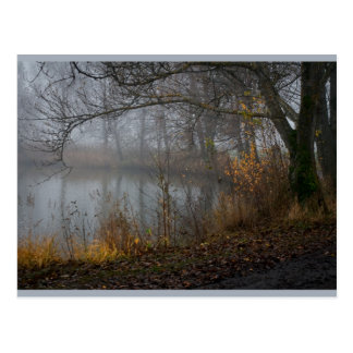 November-Baum CC0310 Postkarte