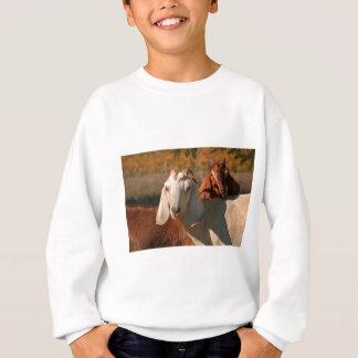 Nubian Ziegen Sweatshirt
