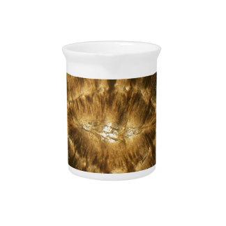 Nummulitekalkstein unter dem Mikroskop Getränke Pitcher